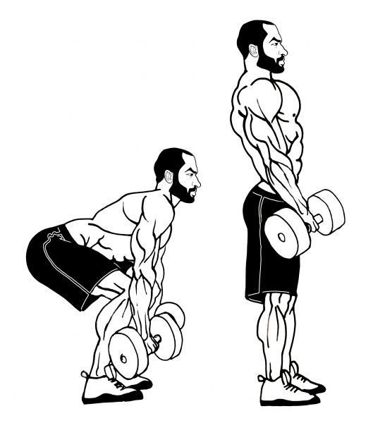 Dumbbell Classic Deadlift