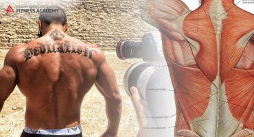 Back Muscles. How Well Do You Know This Muscle Group?