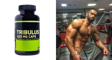 Does Tribulus Boost Testosterone?