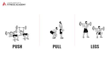 The Push Pull Legs Bible. Part 1