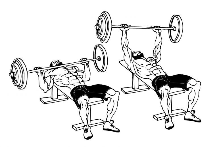 Flat Bench Barbell Chest Press